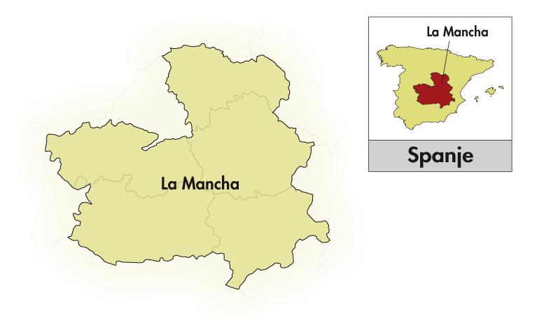 Tonel Cuarenta Vino de la Tierra de Castilla Chardonnay