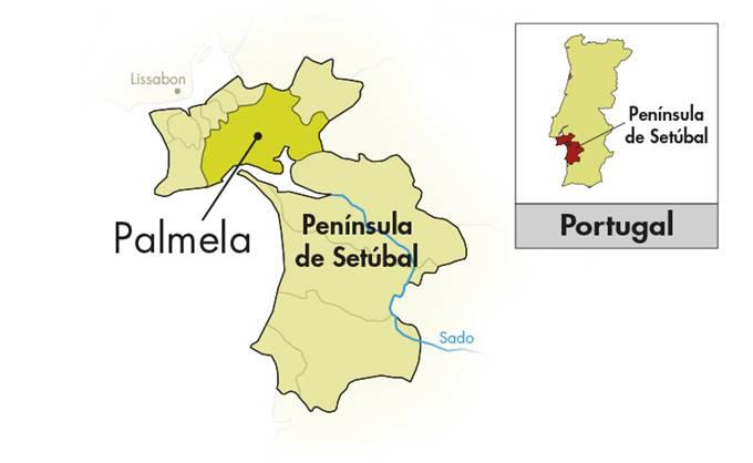 Venâncio da Costa Lima Moscatel Sétubal Reserva da Familia 5 Anos