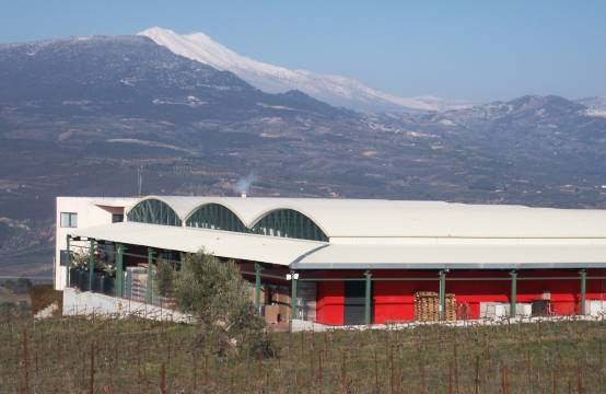 Gaia Estate: de winery in Nemea